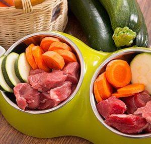 تغذیه سالم در طب ایرانی و مدرن (دوره ارزیابی تغذیه سالم)